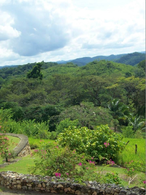 A view from the Good Hope Estate in Jamaica