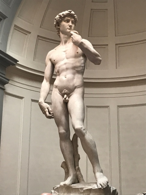 The David in Florence, Italy