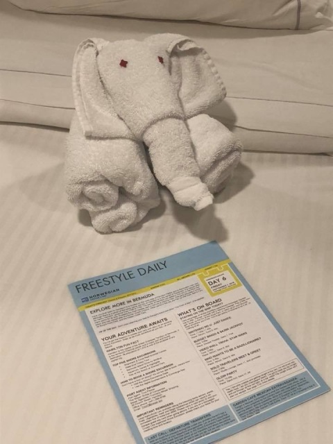 A towel animal from our cruise on the Norwegian Escape